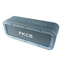 Loa Bluetooth Loa di động 50W Chống nước IPX7 PKCB8PR0 - Hàng Chính Hãng