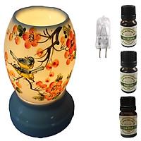 3 tinh dầu (Sả chanh, bạc hà, cà phê) Eco 10ml và đèn xông tinh dầu size L AH26 và 1 bóng đèn