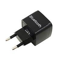 Thiết Bị Nhận Không Dây Bluetooth 3.0 + EDR Tích Hợp Cổng Sạc USB BTR-108 AZONE