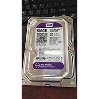 Ổ cứng HDD 500GB WD  chuyên Camera - Ổ cứng Western 500GB - WD500 ( Hàng Chính Hãng )
