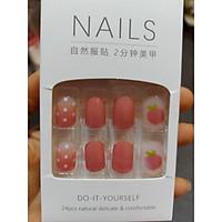 Bộ 24 móng nail giả thời trang nhiều màu kiểu dáng tiện lợi.XX150