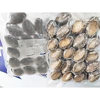 [Chỉ giao HCM] Bào Ngư nhập khẩu Hàn Quốc - 1KG (20-25 con)
