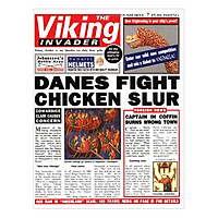 Usborne The Viking Invader