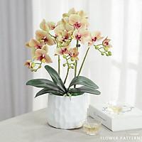 Bình hoa gốm sứ trang trí nghệ thuật HA009 – Hoa lan hồ điệp sang trọng và tinh tế