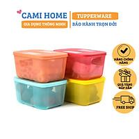 Bộ Hộp Trữ Đông Freezermate Rainbow Tupperware, Hộp Bảo Quản Thực Phẩm, Nhựa Nguyên Sinh An Toàn