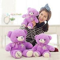 Gấu bông màu tím Teddy Lavender