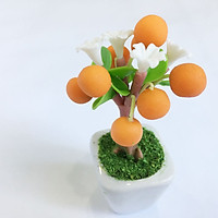 Chậu hoa đất sét mini - Cây cam sung túc