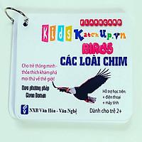 Bộ KatchUp Flashcard cho bé Tiếng Anh – Các loài chim – High Quality