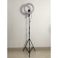 Đèn Led Livestream Size 35cm - 14INCH - 40W-60W