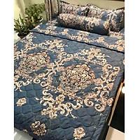 Set ga gối, vỏ gối ôm cotton poly CP042 hàng đẹp màu sắc trang nhã cho phòng ngủ hiện đại