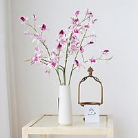 Hoa Giả - Hoa Lan Hoàng Thảo Camelia giống thật Combo bình+ 4 cành lan hoàng thảo +Tặng Kèm Sỏi, Phong Cách Hàn Quốc, Trang Trí Phòng Sang Trọng