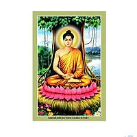 Decal Thích Ca Mâu Ni Phật nhiều kích thước VTC ThichCa_009