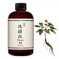 Nước Gội Sạch Gàu Từ Đương Dược YUAN Swertia Shampoo-Nourishing 250ml