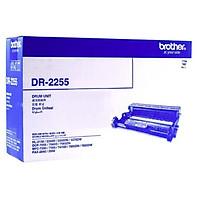 Brother DR-2255 Drum Unit (DR-2255) dùng cho máy Brother HL-2130, HL-2240D, HL-2250DN, HL-2270DW, DCP-7055, DCP-7060D, MFC-7470D, MFC-7360, MFC-7860DW, FAX-2840 - Hàng Chính Hãng