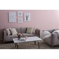 Bộ Sofa Vải 3+1 Nhung Xám AQ012