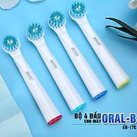 Cho máy Oral B, Bộ 4 đầu bàn đánh răng chải điện Dan House EB-17C, Làm sạch nướu, hết viêm nha chu, tác động kép – Xuất xứ: Anh,