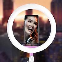 Bóng Đèn Led tròn LiveStream Ø 26CM ✓ Trang điểm ✓ Chụp ảnh ✓ Xăm nghệ thuật ✓ SIêu sáng ✓ Có nút chỉnh 3 chế độ sáng