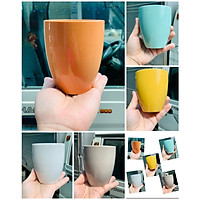 Ly cốc sứ xuất Nhật cao cấp màu sắc rực rỡ