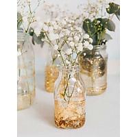 Lọ hoa thủy tinh nhiều mẫu trang trí cho căn nhà, văn phòng, bàn làm việc thêm tươi mát, xinh xắn( Tặng 2m dây gai)