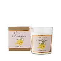 Nến thơm tinh dầu Le Jardin de Julie mùi MIMOSA