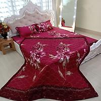 Chăn trần Cotton Poly 2 mặt CP68 màu sắc trang nhã, tăng sự trang trọng cho phòng ngủ hàng đẹp đường chỉ may chắc chắn
