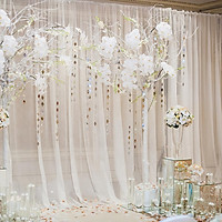 Translucent Curtain Gauze Mesh Cloth For Living Room Banquet Layout Photography Background