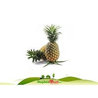 [Chỉ Giao HCM] - Thơm nguyên trái lớn