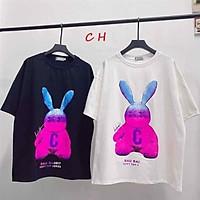 áo phông thỏ C Bad in 5D