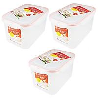 Bộ 03 hộp thực phẩm inomata 1300ml hàng nội địa Nhật Bản No.1853#
