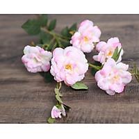 Hoa Giả Hoa Lụa - Combo 3 cành HOA TRÀ NHẬT BẢN- 1 Cành 5 Bông