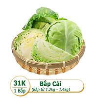 [Rau Củ Trái Cây - Giao nhanh HCM] Bắp cải (1 Bắp - Khoảng 1.2kg - 1.4kg)