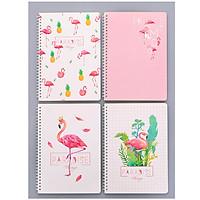Bộ 4 cuốn sổ kẻ ngang Flamingo cỡ B5 - Hàng cao cấp