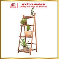Kệ cây cảnh gỗ Lim đa năng hình thang chống mốc gấp gọn RIBO HOUSE chống mối mọt độ bền cao RIBO67, dùng trang trí nhà cửa, kệ để đồ tiện ích thông minh cho gia đình