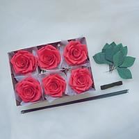 Hộp 6 Đầu Hoa Hồng Giấy Handmade kèm phụ kiện làm hoa