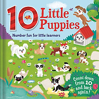 Number Fun For Little Learners: 10 Little Puppies (Count Down From 10 and Back Again)