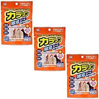Combo 03 Miếng hút ẩm, khử mùi cho tủ quần áo Kokubo 25g - Nội địa Nhật Bản