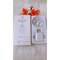 Bộ Củ Cáp Sạc Siêu Nhanh 20W - Hỗ Trợ Cho Các Dòng Iphone, Ipad - USB-C To Lightning - Full Hộp Phụ Kiện - Hàng Nhập Khẩu - CAP0002W