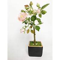 Chậu hoa đất sét mini- Bonsai hoa hồng cổ - Quà tặng trang trí handmade (20x10x10cm)