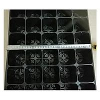 ComBo 3 Khay nhựa TOKAI KASEI NHẬT BẢN 40 Lỗ, KT lỗ 7x7cm, có Túi Bầu kèm theo