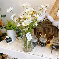 Combo 10 Cành Cúc Hoạ Mi Hoa Giả 5 Bông Cao Cấp 50 cm