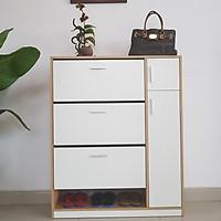 Tủ Giày Thông Minh Cánh Xoay Lật 3 tầng Model AAH01