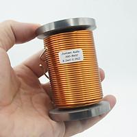 Cuộn cảm Jantzen 8.2mH lõi sắt từ dây 1.6mm Hàng chính hãng