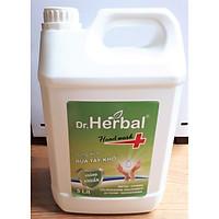 DUNG DỊCH RỬA TAY KHÔ DR. HERBAL - HD PHARMA - CAN 5L
