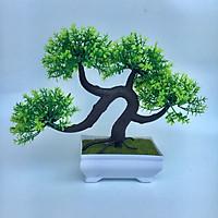 Cây bonsai mini để bàn - chậu cây kiểng giả để tiểu cảnh