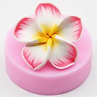 Khuôn rau câu silicon hoa sứ