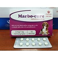 Marbocure - giảm viêm da trên chó mèo
