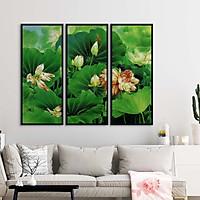 Bộ 3 tranh canvas hoa sen trắng đẹp dịu dàng - HS001