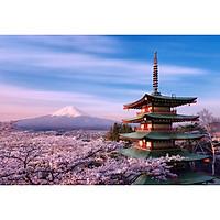 Tadiwifi - Cho Thuê Wifi Du Lịch 4G Nhật Bản 1 Ngày Không Giới Hạn Dung Lượng