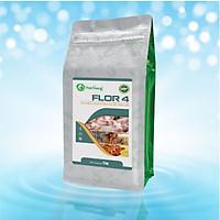 Kháng sinh đặc trị nhiễm trùng đường ruột FLOR 4