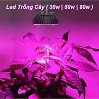 Đèn led trồng cây tản nhiệt thép chuyên dụng tại nhà